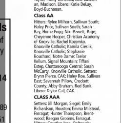 class aa all state team 2013 the tennessean