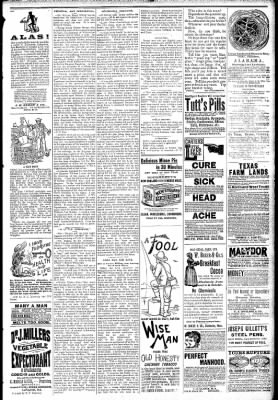 Logansport Pharos-Tribune from Logansport, Indiana on February 27, 1891 · Page 7