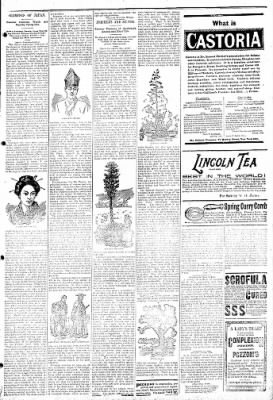 Logansport Pharos-Tribune from Logansport, Indiana on February 21, 1895 · Page 7