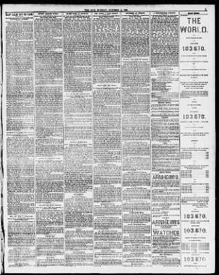 The Sun from New York, New York on October 5, 1884 · Page 5