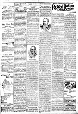 Logansport Pharos-Tribune from Logansport, Indiana on April 11, 1895 · Page 4